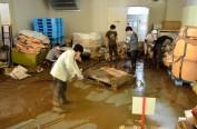 """日本暴雨导致知名酒厂停电 30万瓶""""獭祭""""酒报废"""