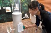 松荣堂在京都开设香味主题乐园 宣传日本香文化