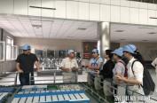 深哈合作|193个合作项目为哈尔滨注入南国暖流