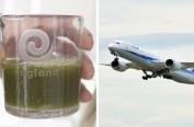 日本公司发现比头发丝还细的藻类 可助力飞机航行