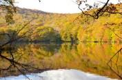 青森县迎来红叶观赏季 十和田湖等地观光客增多