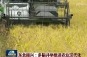 【号外】刚刚,央视新闻联播头题关注东北振兴!