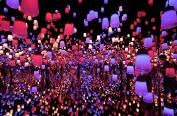 日本森大厦数字艺术博物馆游客破百万 光影盛宴惊艳绝伦