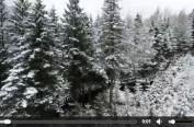 """冰天雪地就是""""金山银山""""——来自黑龙江雪乡旅游景区的报道"""