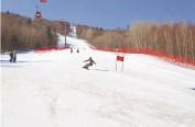 走啊!咱们去哈尔滨滑春雪