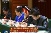 【在習近平新時代中國特色社會主義思想指引下——代表委員議國是】人大工作依法履職開新篇