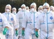 日本宫城县养鸡场检出禽流感病毒 22万只鸡被杀