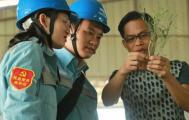 贵港供电局:村民种苦得甜致富经里的秘密