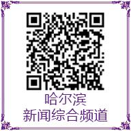 哈尔滨新闻综合频道订阅号