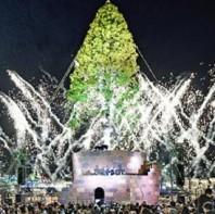 日本神户点亮30米高圣诞树 赏夜空中绚烂灯火