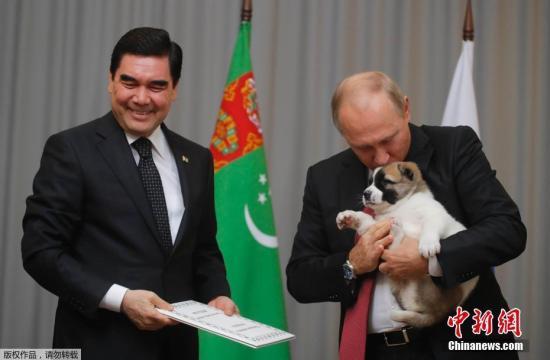 喜欢狗的普京,迫不及待的亲吻小狗。
