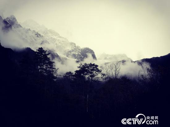玉龙雪山核心区是长江上游最重要的生态屏障。(何川/摄)