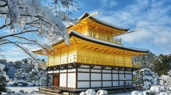 美翻!一场罕见的大雪把日本变成了这样(组图)