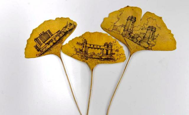 重庆大学生树叶作画 把校园画进银杏叶