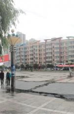 """""""美丽哈尔滨·全国文明城市行""""——走进双城区"""