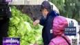 一年一度囤秋菜 东北人的生活情怀