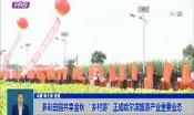 """多彩田园共享金秋 """"乡村游""""正成哈尔滨旅游产业重要业态"""