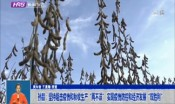"""孙喆:坚持阻击疫情和秋收生产""""两不误"""" 实现疫情防控和经济发展""""双胜利"""""""