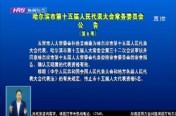 哈尔滨市第十五届人民代表大会常务委员会公      告 (第6号)