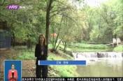 阿城区:依托资源突出特色 打造乡村旅游休闲度假胜地