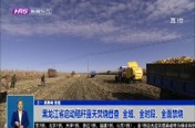 黑龙江省启动秸秆露天焚烧督查  全域、全时段、全面禁烧