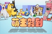 萌主驾到2018-12-03