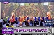 中国北药智慧产业园产业馆正式启幕