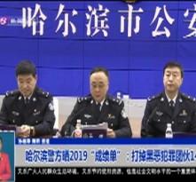 """哈尔滨警方晒2019""""成绩单"""":打掉黑恶犯罪团伙146个"""