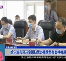 哈尔滨市召开全国扫黑办挂牌督办案件推进会