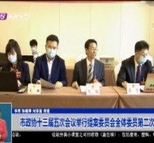 市政协十三届五次会议举行提案委员会全体委员第二次会议