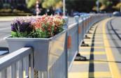万余米景观交通护栏亮相街头|反光提示保障安全、间隔安装美化花篮,年底前再增2万米